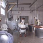 Cheese Factory on Golosaitalia Day Tour