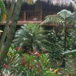 Itzama - at Pico Bonito Lodge