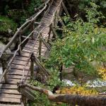 Bridge over Erma Gorge