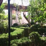 jardin con terraza