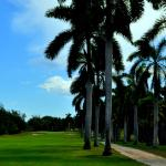 Foto di Half Moon Golf, Tennis & Beach Club
