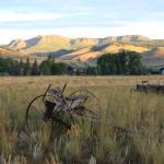 Photo de Broadacres Ranch