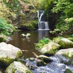 The Linn Falls Photo