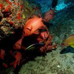 Explore Kauai Scuba