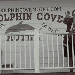 Dolphin Cove Motel Photo