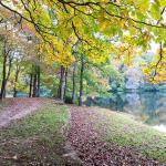 Lake Winfield Scott Recreation Area Photo