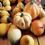 in church -gourds