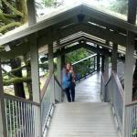Multiple Level walkways