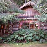The Log Cabin!  So cute