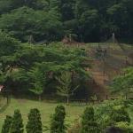Green Pia Iwanuma