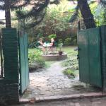 garden that belongs to Discovery Inn