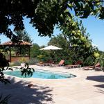 piscine et spa   vue du verger