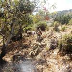 aphrodite trail