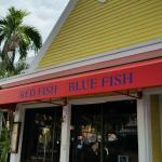 Bilde fra Red Fish Blue Fish