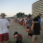 Probably 30 people lined up, each with a turtle to release.