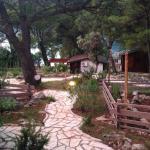 Secret gardens :)