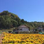 Liuku Village