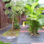 Una de las vistas del jardin del Hotel Si Mi Capitan