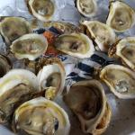 Oysters on the Half Shell for Happy Hour