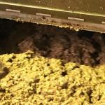 crushed olive paste