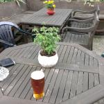 Beer garden at the Vale Cottage, with an excellent pint of Timothy Taylor's