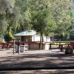 Picnic tables, play area, playing field and restrooms