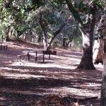 Foto de Nojoqui Falls Park