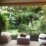 The beautiful view into the tropical garden