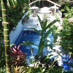 Vista de la piscina/Pool view