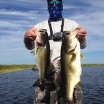 Mark King Bass Fishing Guide