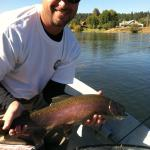 Big Redband Rainbows Williamson River
