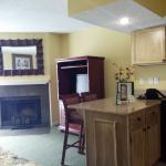 Fireplace, TV and Counter area in Rm 325