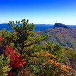 Foto de Hawksbill Mountain Trail