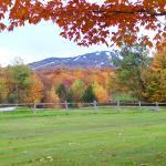 Foto de Killington Mountain Lodge