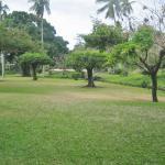 Photo de Royal Tahitien
