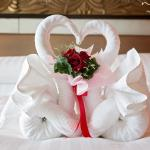 Very nice and beautiful love swan for our honeymoon