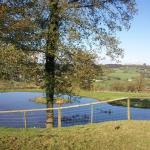 Courtmoor pond