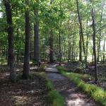 Patuxent Research Refuge - North Tract