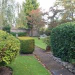 View of the Vinehouse garden