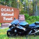 Photo de Ocala National Forest