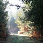 La Varenne sentier de randonnée