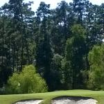 Wedgewood Golf Course Picture