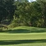 Wedgewood Golf Course Photo