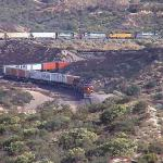Lots of Rail Traffice to observe