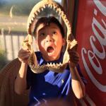 Bull Shark Jaws