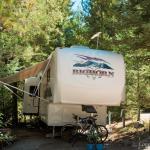 Timber Wolf Resort Foto