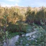 Arroyo que pasa a unos metros del rancho
