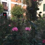 Garden of Hotel Kalehan