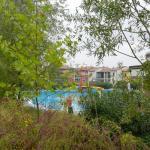 piscina dal giardino