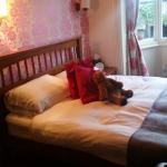 Foto de Red Lion Hotel